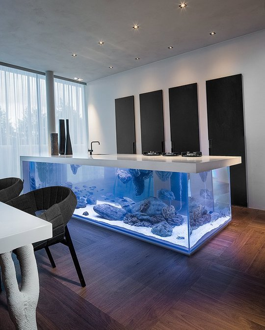 Aquarium kitchen island